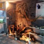 Инсталляция «Мамонт». Зал геологии