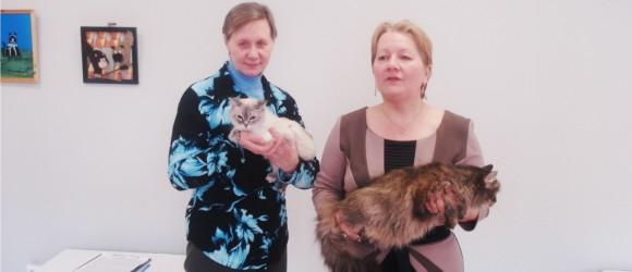 справа С.Д. Елисова