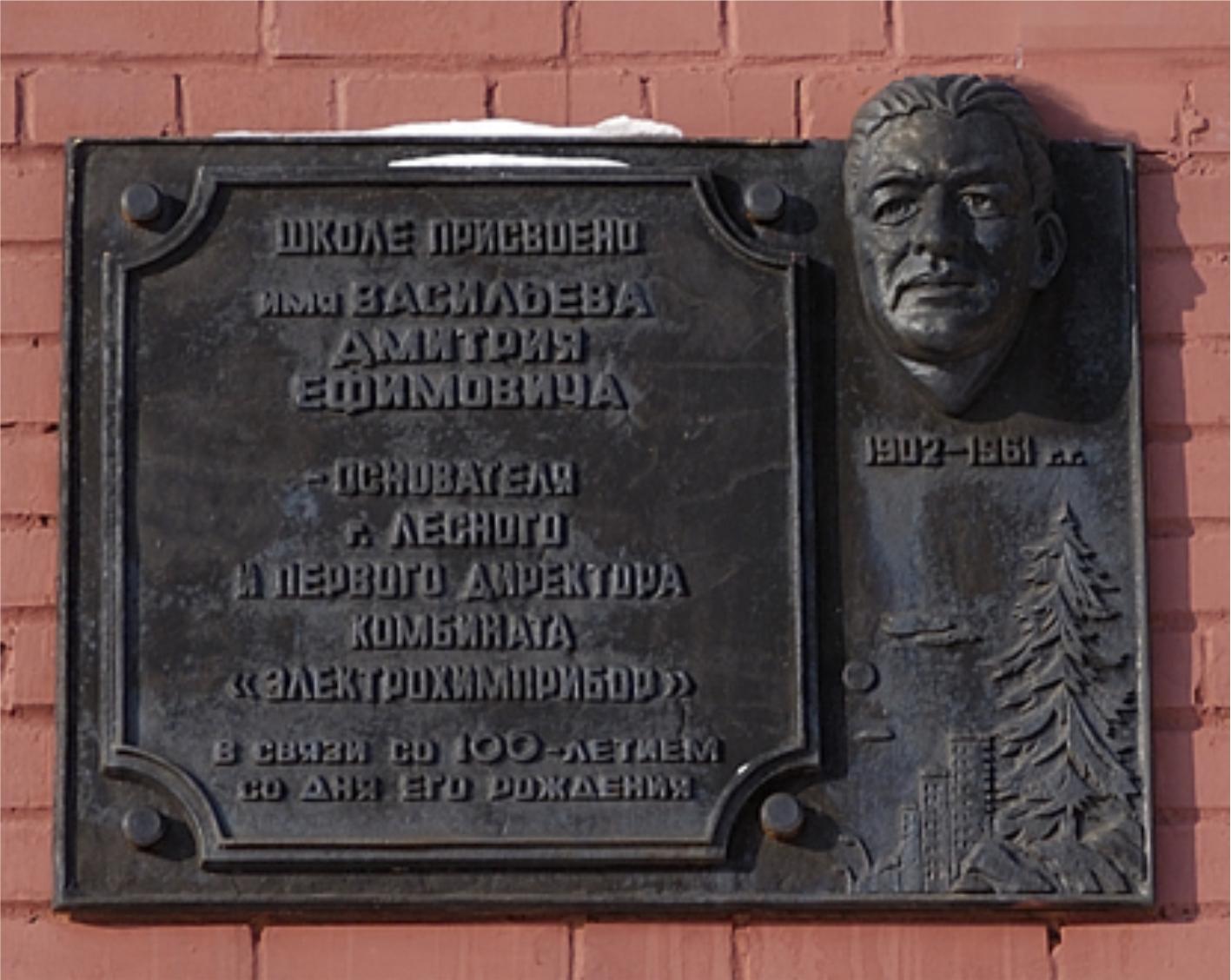 Д. Е. Васильев
