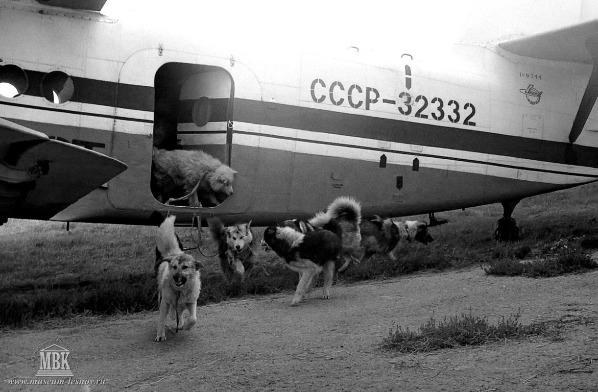 Участники Полярэкс, аэродром с. Таёжный, 1983 г. фото С.Е. Федоровского.