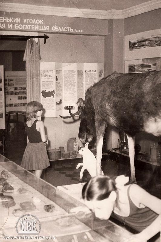 Фрагмент экспозиции Природа, 1970-е, музей тогда располагался во Дворце пионеров.