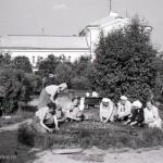 Клумба на пересечении боковых аллей, 1961 г., фото С.Е.Федоровского